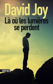 Couverture-roman-David-Joy-Lumieres-se-perdent